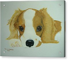 Acrylic Print featuring the painting Lovable Puppy by Norm Starks