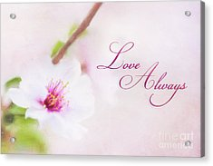 Love Always Acrylic Print