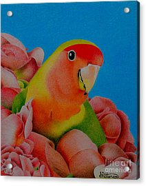 Love Bird Acrylic Print