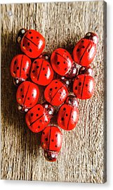 Love Bug Acrylic Print