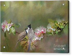 Acrylic Print featuring the mixed media Love Couple by Eva Lechner
