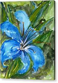 Love Flowerts Acrylic Print by Baljit Chadha