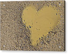 Love In A Muddy Puddle Acrylic Print by Meirion Matthias
