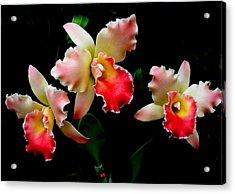 Love In Flowers Acrylic Print by Jeanette Oberholtzer