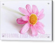 Love Is A Flower Acrylic Print