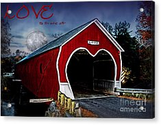 Acrylic Print featuring the photograph Love Is In The Air by DJ Florek