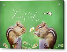 Love Is In The Air Acrylic Print by Lori Deiter