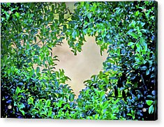Love Leaves Acrylic Print by Az Jackson