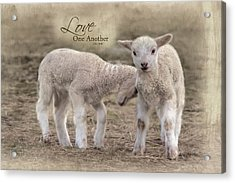 Acrylic Print featuring the photograph Love One Another by Robin-Lee Vieira