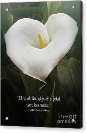 Acrylic Print featuring the photograph Love by Peggy Hughes
