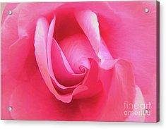 Love Pink Acrylic Print