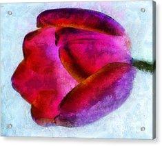 Love Remains Acrylic Print