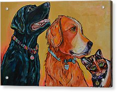 Acrylic Print featuring the painting Love Rescue Spay by Patti Schermerhorn