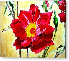 Acrylic Print featuring the painting Love Rose by Ana Maria Edulescu