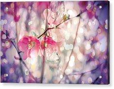 Love Song Acrylic Print by Toni Hopper