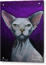 Love Sphynx Cat Acrylic Print