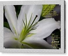 Love Acrylic Print by Terry Wallace