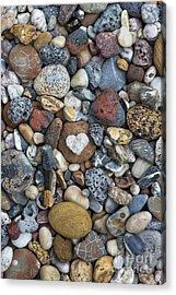 Love The Beach Acrylic Print by Tim Gainey