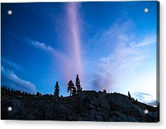 Love The Color Up High Acrylic Print by Brian Williamson