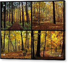 Love The Forest Collage Acrylic Print