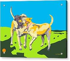 Love Tugs....the Rope Pull Acrylic Print by Su Humphrey