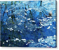 Love You Beverly Hills Acrylic Print by Todd Sherlock