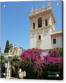 Lovely Blooming Day In Balboa Park San Diego Acrylic Print