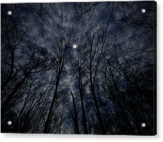 Lovely Dark And Deep Acrylic Print by Robert Geary