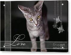 Lovely Face Card Acrylic Print