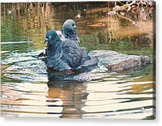 Lovers On A Hot Summer Day Acrylic Print