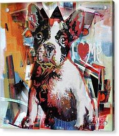 Loving Dog 44c Acrylic Print