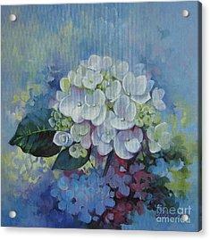 Loving Hydrangea Acrylic Print