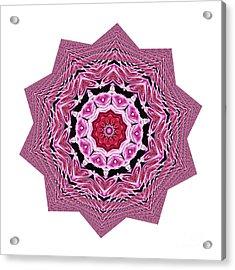 Loving Rose Mandala By Kaye Menner Acrylic Print