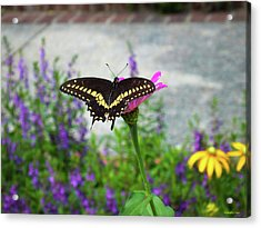 Loving Summer Acrylic Print