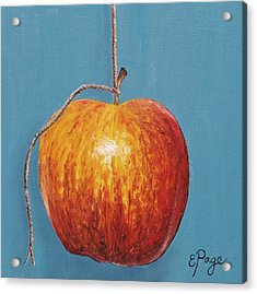 Low Hanging Apple Acrylic Print by Emily Page