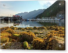 Low Tide At Horseshoe Bay Canada Acrylic Print by David Gn