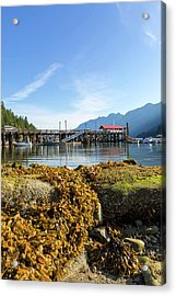 Low Tide At Horseshoe Bay Canada On A Sunny Day Acrylic Print by David Gn