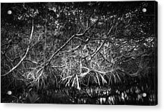 Low Tide Bw Acrylic Print by Marvin Spates