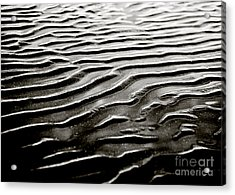Low Tide  Acrylic Print by Charmian Vistaunet