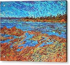 Low Tide Oak Bay Nb Acrylic Print