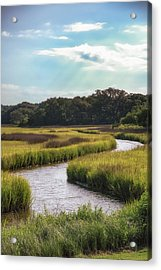 Lowcountry Creek Acrylic Print by Drew Castelhano