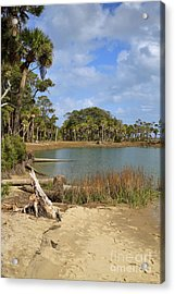 Lowcountry Lagoon Acrylic Print by Louise Heusinkveld