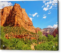 Lower Emerald Pool Trail - Zion National Park Acrylic Print by Penny Lisowski