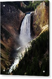 Lower Falls At Yellowstone Acrylic Print by Mary Capriole