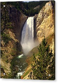 Lower Falls Acrylic Print by Marty Koch
