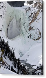 Lower Falls Of Yellowstone II Acrylic Print