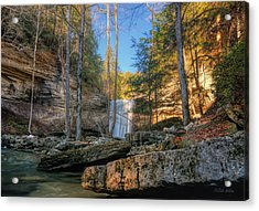 Lower Greeter Falls 2 Acrylic Print by Dale Wilson