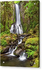 Acrylic Print featuring the photograph Lower Kentucky Falls In Spring by Patricia Davidson