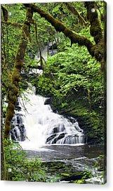 Lower Lunch Creek Falls Acrylic Print