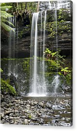 Lower Russell Falls Tasmania  Acrylic Print by Odille Esmonde-Morgan